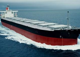 bulk vessel2