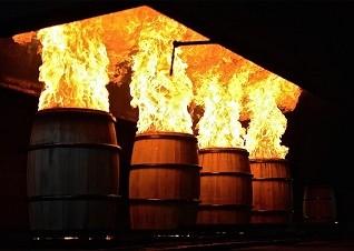web - Portada Bourbon